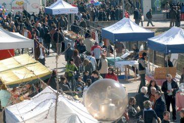 El aceite y el sol reunieron a miles de visitantes en Arróniz