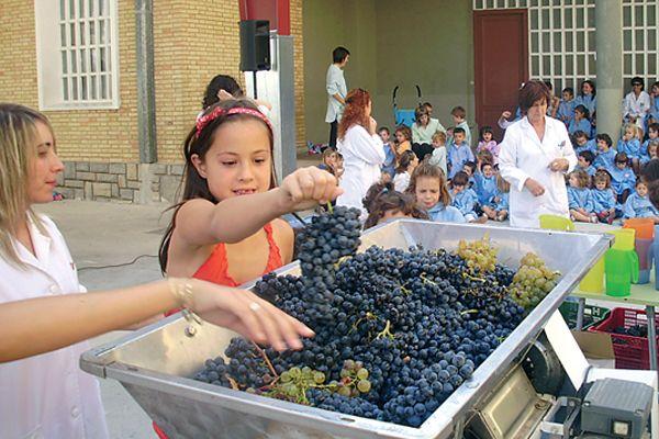 Los alumnos del colegio Mater Dei celebraron una jornada de vendimia