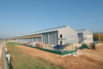 La granja de huevos Legaria triplica su producción  en una nueva etapa