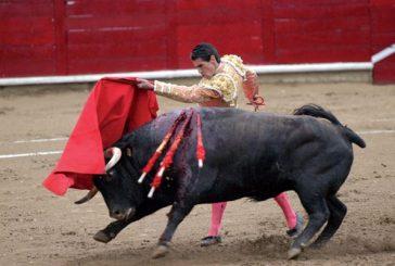 Los abonos para los toros mantienen el precio