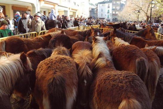 Ya están aquí las Ferias de San Andrés