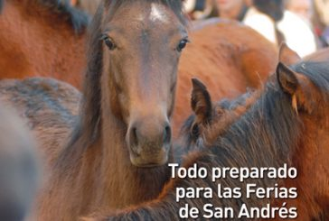 CALLE MAYOR 399 – TODO PREPARADO PARA LAS FERIAS DE SAN ANDRÉS