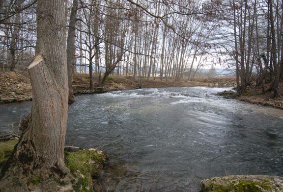 ASOCIACIONES – Salvemos el Ega – La 'ONG' del río Ega