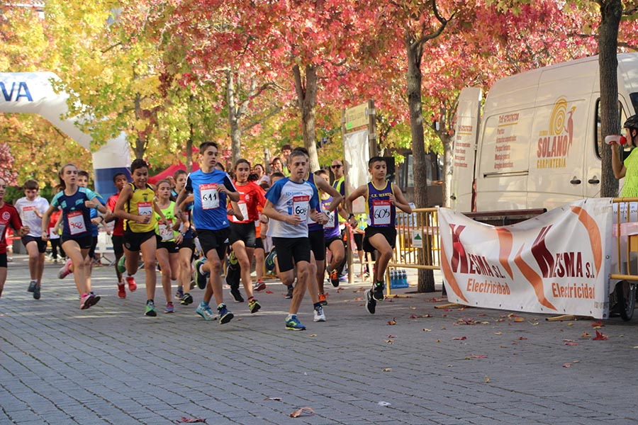 215 participantes en la 5k-10k Estella-Lizarra