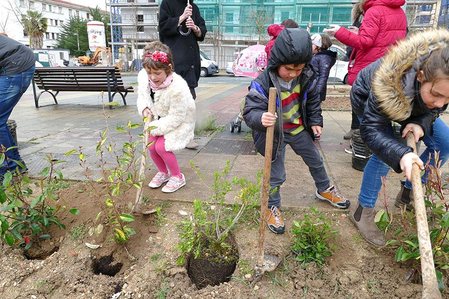 Plantados 80 arbustos y 10 árboles frutales en el Día del Árbol
