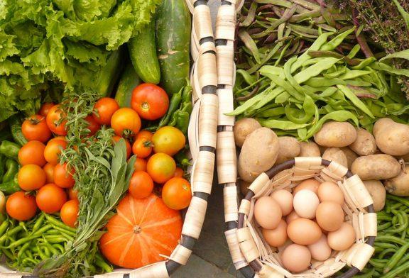 ¿Se preocupa por una alimentación de calidad?  ¿Valora lo ecológico y la producción local?