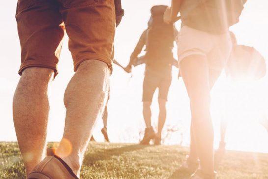 ¿Incorpora la actividad de caminar a su vida diaria?