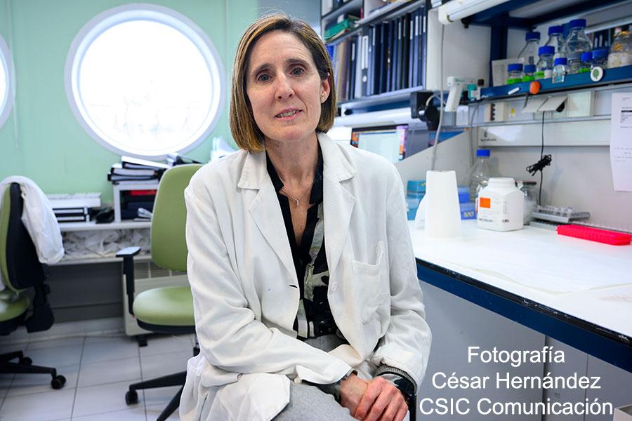 """PRIMER PLANO -  Isabel Sola Gurpegui, viróloga - """"Aspiramos a que la vacuna sea segura y eficaz en el tiempo"""""""